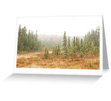 Fog in Algonquin Park, Canada Greeting Card