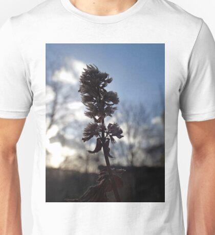 The beauty of decay Unisex T-Shirt