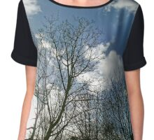 Winter trees and blue sky Chiffon Top
