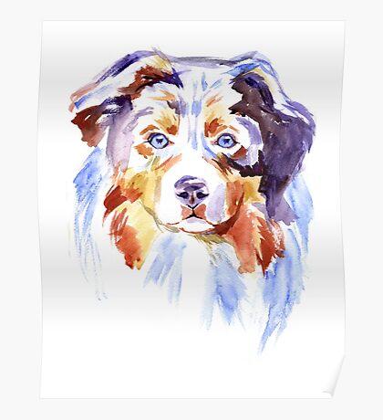 Watercolor Australian shepherd Poster