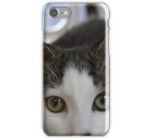 Norton the Fluffy Kitten iPhone Case/Skin