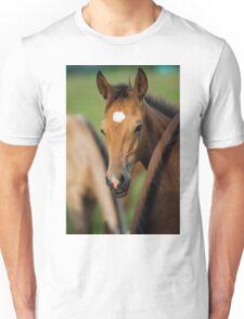 cute foal Unisex T-Shirt