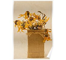 Gloriosa Daisy Flowers Withered Poster