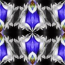 Blue Gentian Flower Abstract Art by SmilinEyes