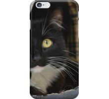 Sox the Black & White she-cat iPhone Case/Skin