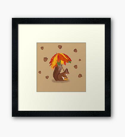 Squirrel Shops for Nuts  Framed Print
