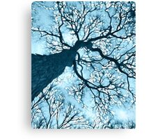 """Winter Lace"" Canvas Print"