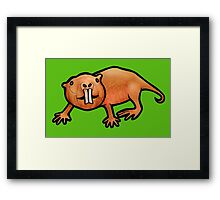 Naked Mole Rat Framed Print