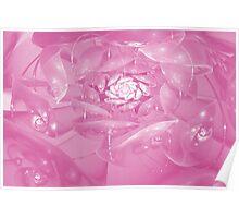 Fractal rose Poster