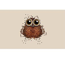 Coffee beans and cups forming owl  Photographic Print