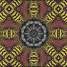 Cartwheels over Oblivion... by Roz Rayner-Rix