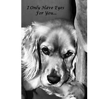I Only Have Eyes For You... Photographic Print