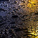 Rain Drops in Color by Donncha O Caoimh