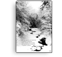 Stinson Brook - Camus Quote Print and Poster Canvas Print