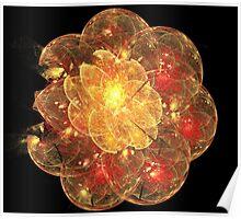 Orange Blossom Flower Poster