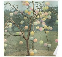 Psychedelic Grapefruit Tree Poster