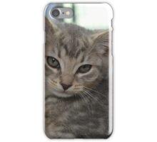 Cute Grey Tabby Kitten iPhone Case/Skin