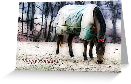 Happy Holidays! by Polly Peacock