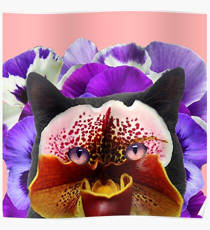 Floral cat Poster