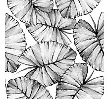 Graphic pattern with leaves. Photographic Print