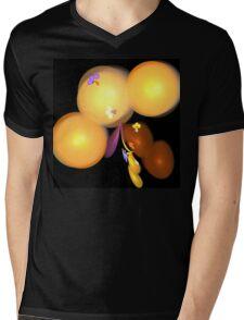 Orange Berries Mens V-Neck T-Shirt