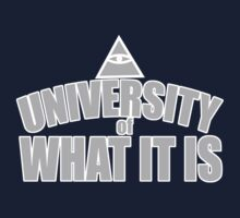 The University of What It Is Kids Clothes