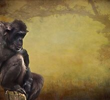 The Thinker by Lissywitch