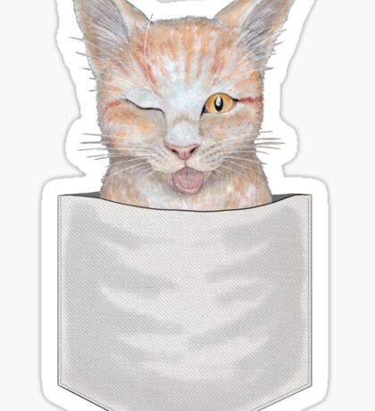 ;P ~ Seb the Groovy Cat  Sticker