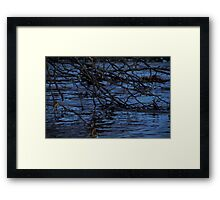 Branches in Water Framed Print