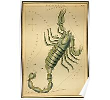 Scorpius Constellation, Zodiac Sign, 1825 Poster