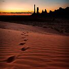 Walk the Walk - Monument Valley, Utah, USA by Sean Farrow