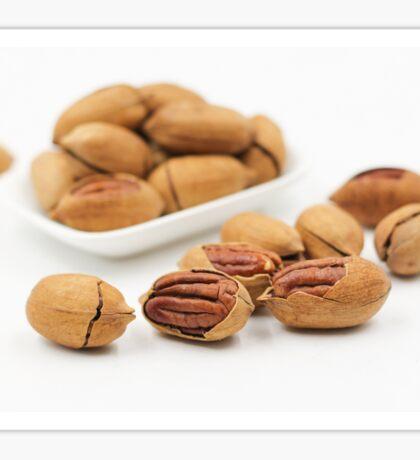 Pecans Nuts Sticker
