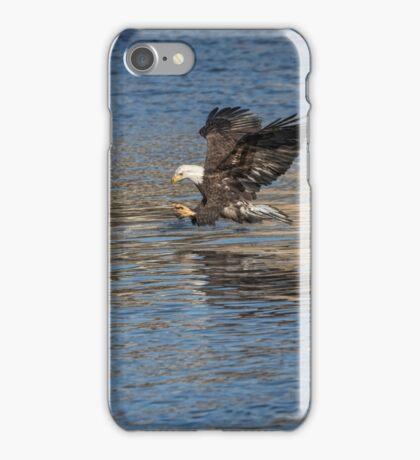 American Bald Eagle 2017-10 iPhone Case/Skin