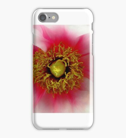White Pink Peony Bloom iPhone Case/Skin