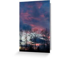 Spring Trees Greeting Card