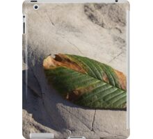 Somewhere Between Summer and Fall iPad Case/Skin