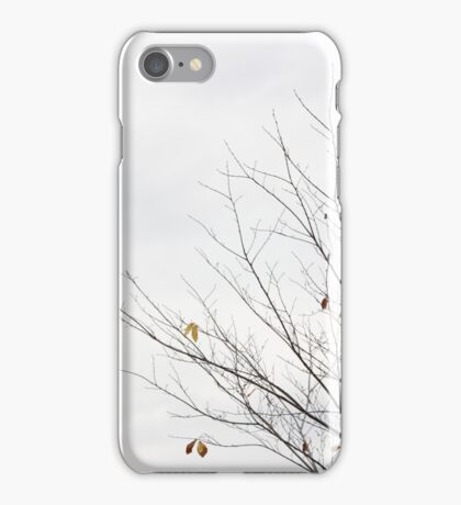 bare tree  // 2016 iPhone Case/Skin