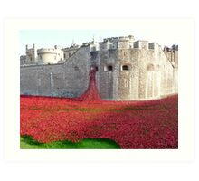 Ceramic Poppies at Tower  of London Art Print