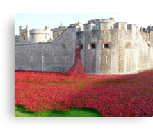 Ceramic Poppies at Tower  of London Canvas Print