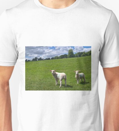 Lambs In Summertime 2 Unisex T-Shirt