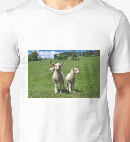 Lambs In Summertime 3 Unisex T-Shirt