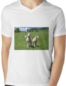 Lambs In Summertime 3 Mens V-Neck T-Shirt
