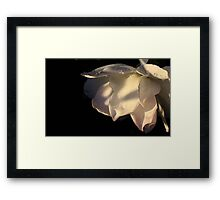 The Art of Flowers Framed Print