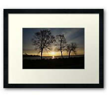 Tree on a lake in a sunset Framed Print