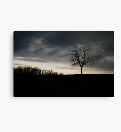 Dark creepy tree on a field  Canvas Print