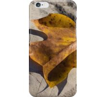 Tulip Tree Leaf - Shadow and Light iPhone Case/Skin