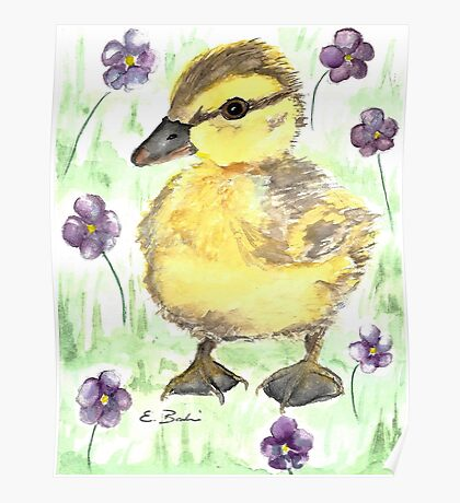 Spring Duckling Watercolor Painting  Poster
