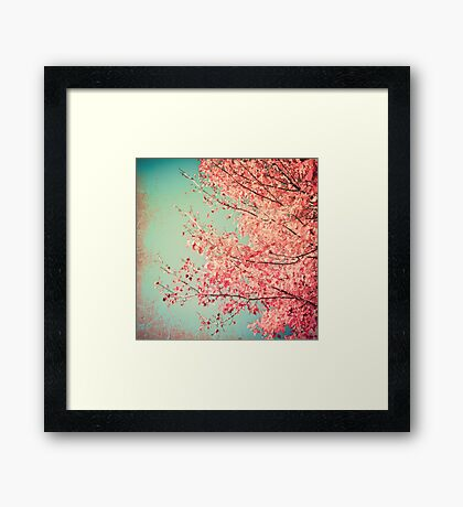 Pretty pink leafs in a textured blue sky Framed Print
