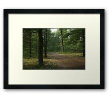 The Path Less Taken? Framed Print