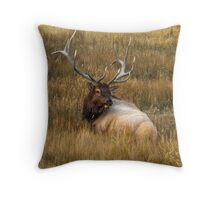 BEDDED DOWN Throw Pillow